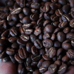 浅煎りのコーヒー豆で美味しい抽出方法